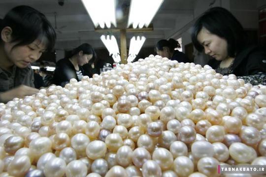 کارگران در حال دستهبندی مرواریدهای کشت مصنوعی در آب شیرین، در یک کارخانهی تولید مرواید در ژوجی استان ژیجیانگ