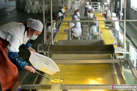کارگران در حال کار در یک کارخانهی صنایع غذایی در ییچانگ استان هوبی