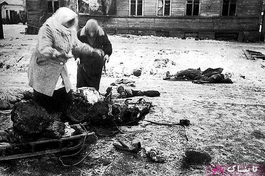 دو زن در حال جمع کردن بقایای یک اسب مرده برای خوردن