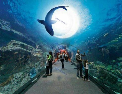 تونل در یکی از بزرگ ترین آکواریوم های دنیا ، دبی