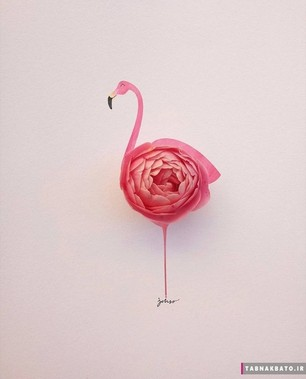 خلق آثار هنری خلاقانه با استفاده از گُل ها و میوه ها