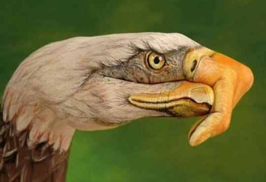 عکس هایی از نقاشی های خارق العاده روی دست