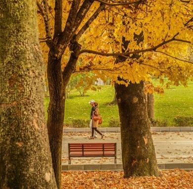 پاییز در پارک ملت؛ تهران