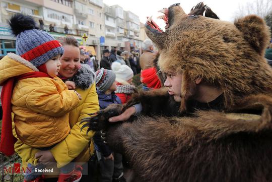 تصاویر جالب از مراسم رقص خرس ها در رومانی